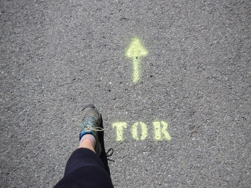 This way to the Tor!