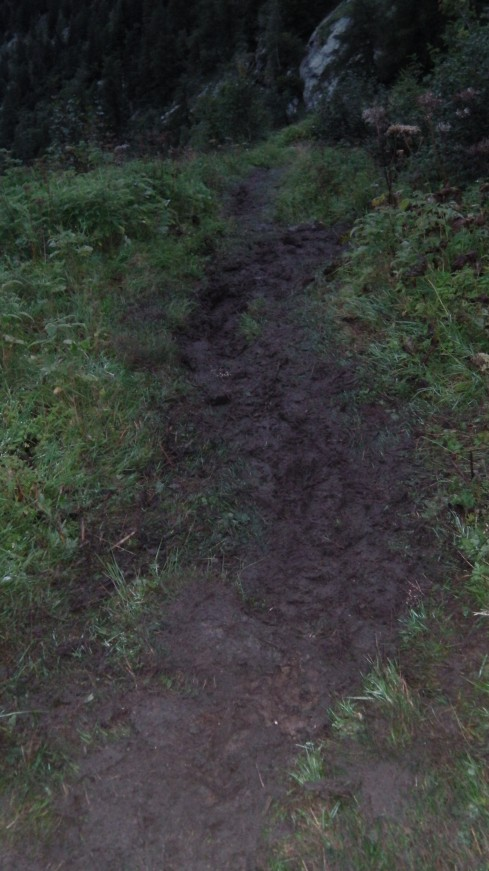 From Rifugio Coda all the way to Niel, we had to negotiate mud like this. Slippery, greasy, sticky mud. In the dark.