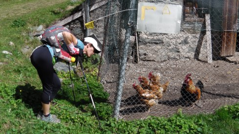 There is always time to have a visit with chickens. Sadly, we had a language barrier between us.