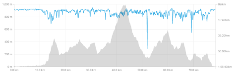 Here's the elevation profile according to Strava. The back third was tough! In the pace profile, you can see the two places where I sat down at aid stations.