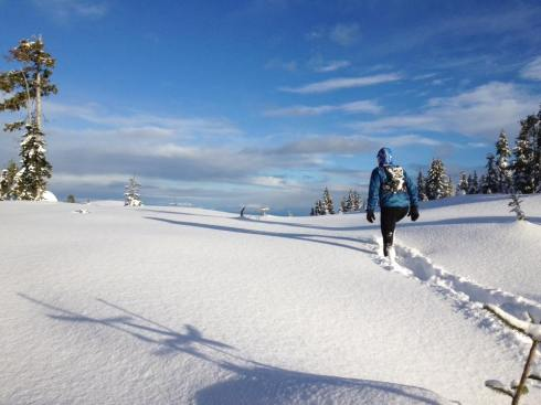 Yes, yes - we have opportunities to train in the snow but it is a stretch to go for more than 20 km in this terrain.
