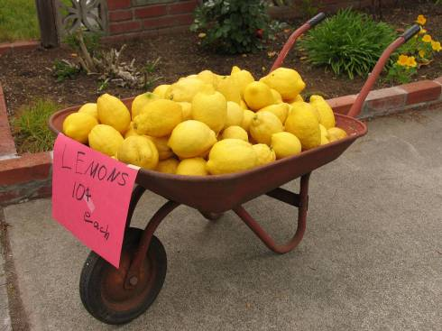 fruit-lemons-wheelbarrow-food
